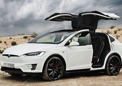 Tesla Model X P100D vleugels